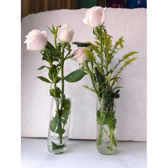 Hộp 2 lọ hoa để bàn thủy tinh 100 Plus